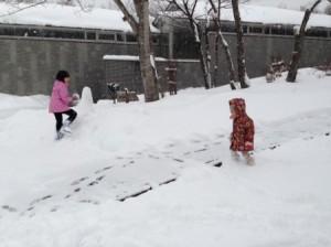 いきなり雪国